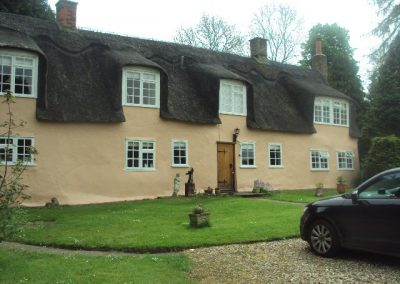Thatched house decoration